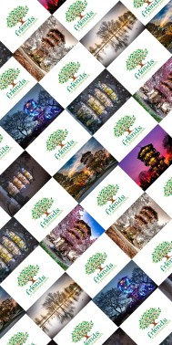 Patterson Park Photo Montage Wrapping Paper